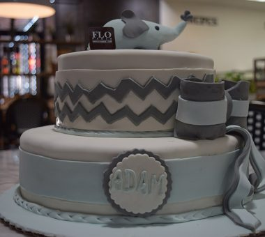 Specialty Cakes11